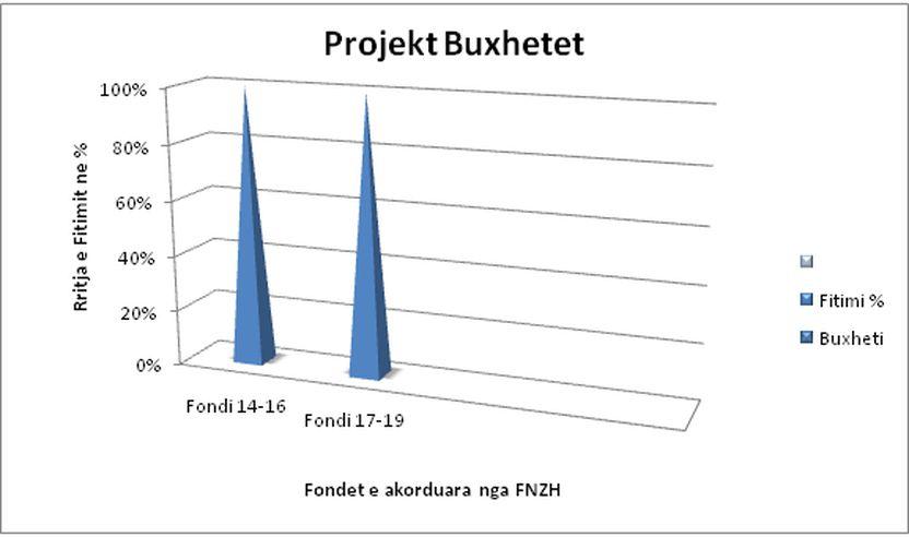 Paraqitja grafike e projekt-buxheteve në kohë.