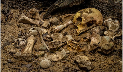 Objektet u zbuluan në vendin e varrezave Rouazi, afër Rabat